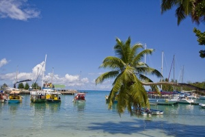 Quarter million dollars to be disbursed to Seychellois ...