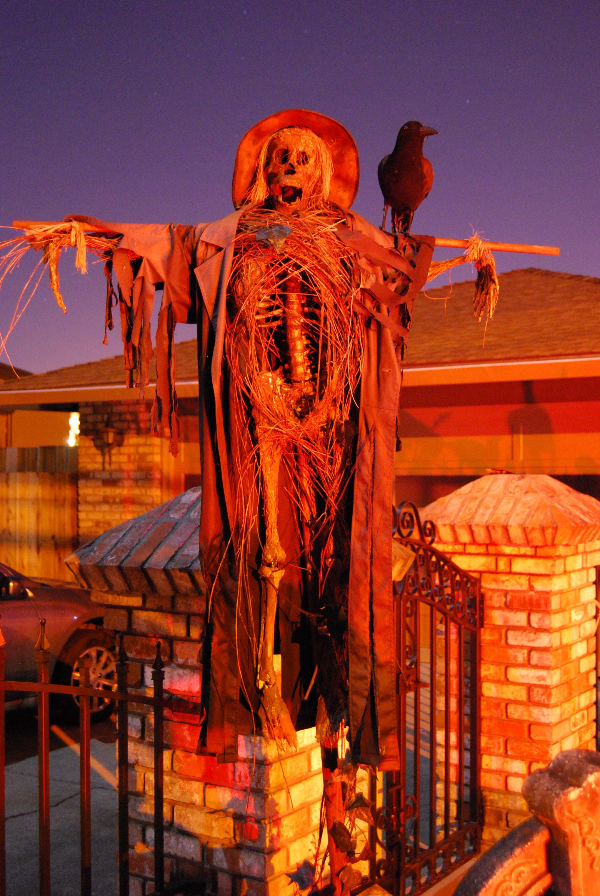 Halloween Haunted House 2009 Pirates Added To Halloween