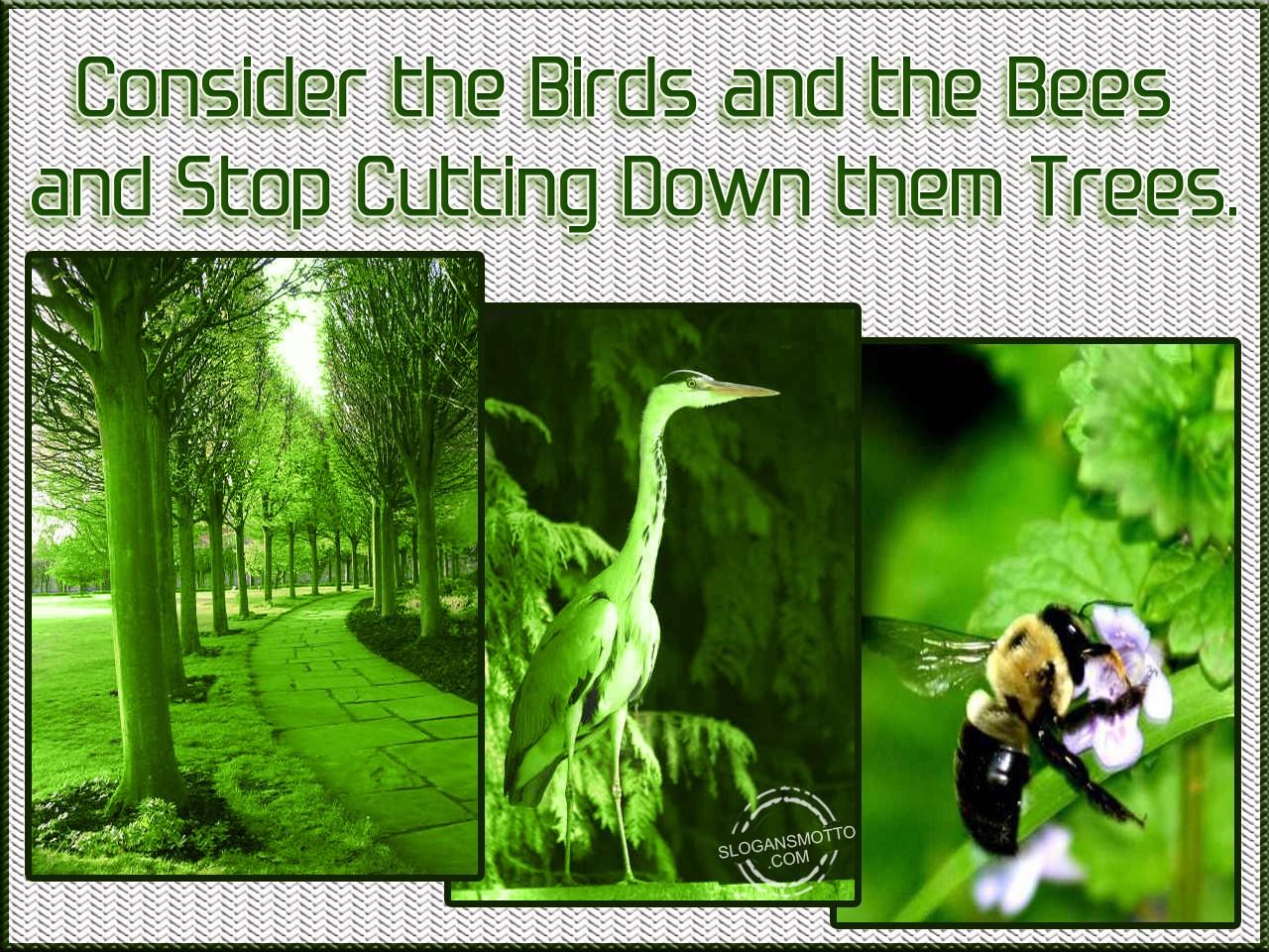 Slogans For Saving Birds