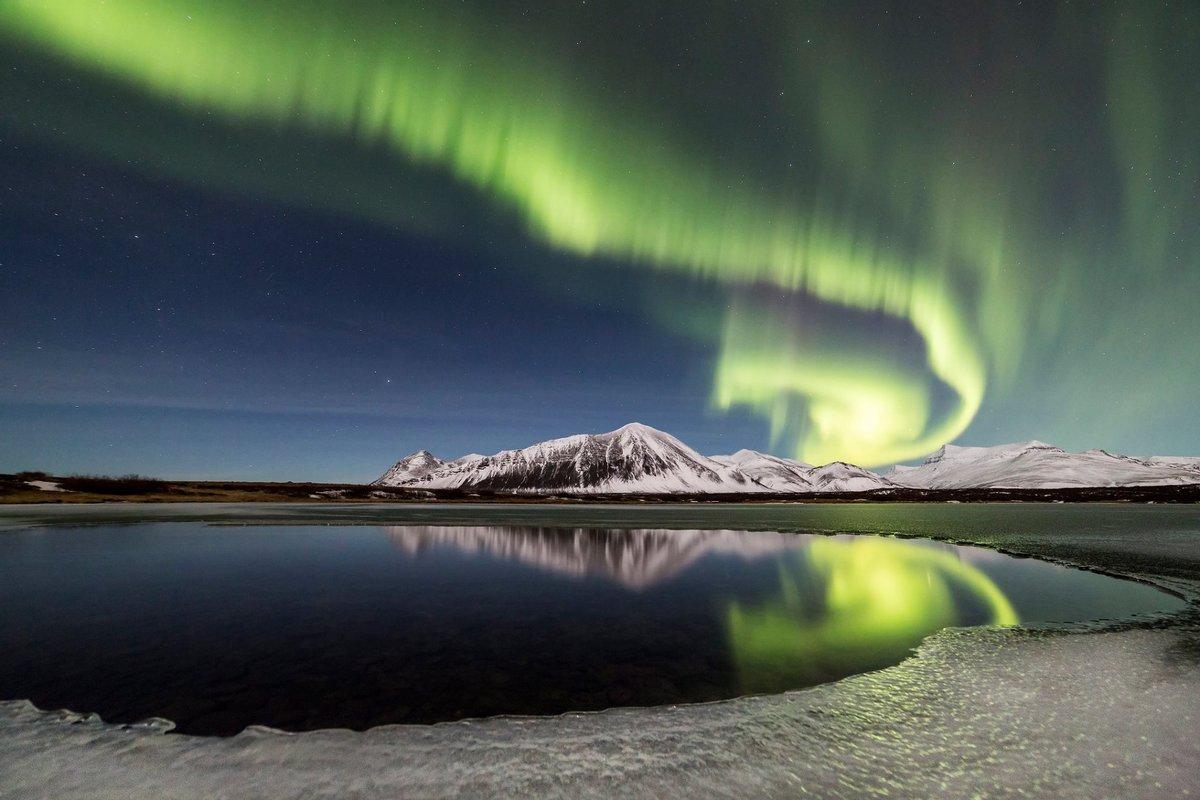 Soft Northern Lights Serve
