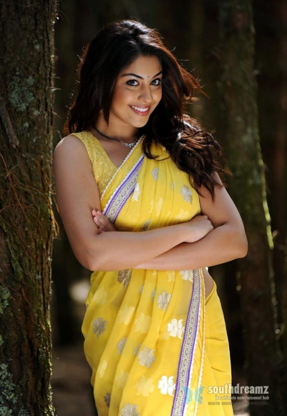 Richa Gangopadhyay Latest Hot Spicy Stills 26 171 South