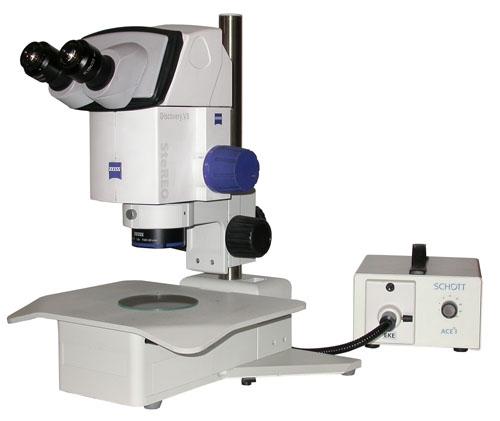 Nikon Microscope Light Bulbs