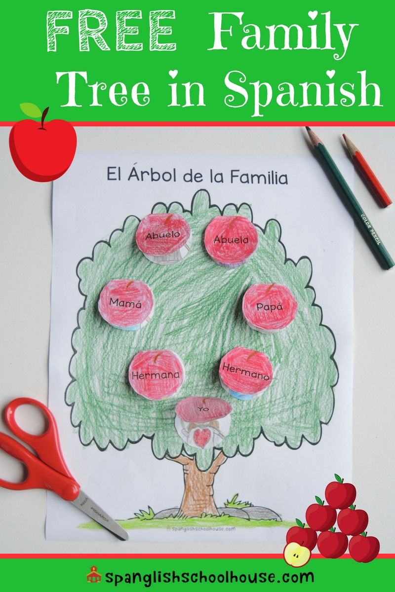 family trees in spanish - 736×1104