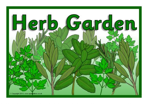 Herb Garden Signs Sb9544 Sparklebox