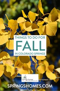 Things to do for Fall in Colorado Springs