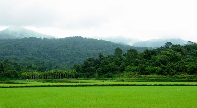 Coorg Madikeri Honeymoon Places