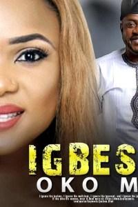 IGBESE OKO MI – Yoruba Movie 2019 [MP4 HD DOWNLOAD]