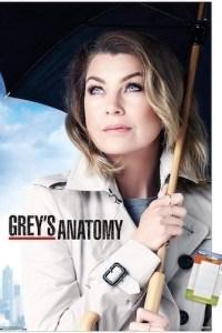 Greys Anatomy Season 17 Episode 7 (S17E07) Subtitles