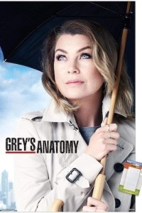 Greys Anatomy Season 17 Episode 14 (S17E14) Subtitles