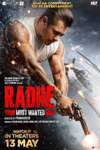 Radhe (2021) Hindi Subtitles
