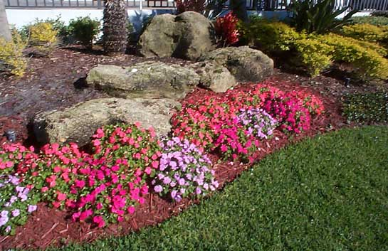 Do It Yourself Landscaping
