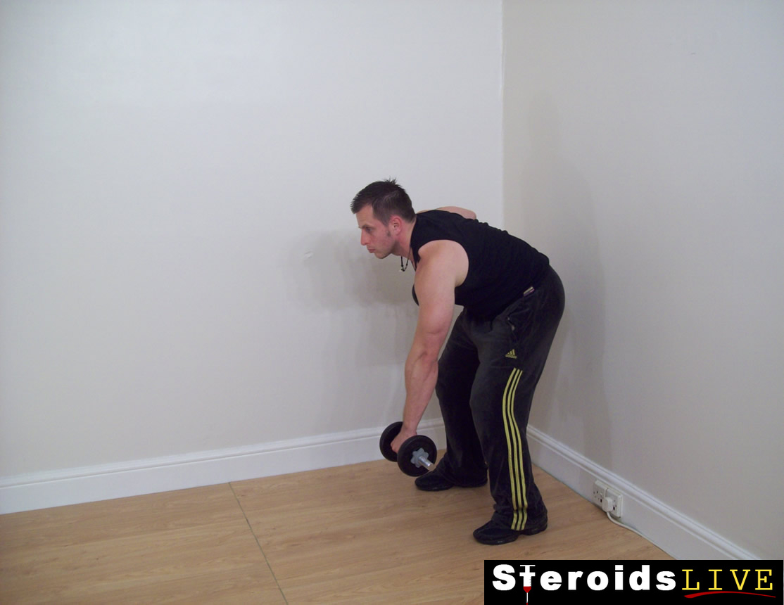 Bent Knee Dumbbell Rotation Rows Free Weight Back Exercise
