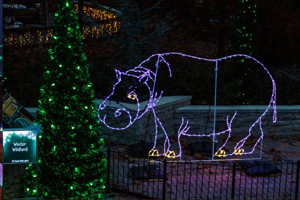 Zoo Wild Lights St Louis