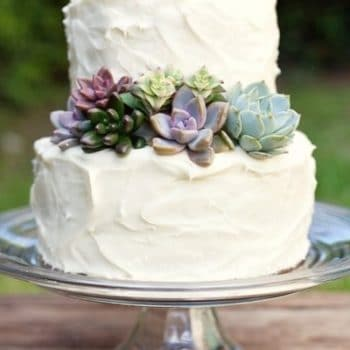 Succulent Cake Topper Products   Urban Succulents Succulent Cake Toppers