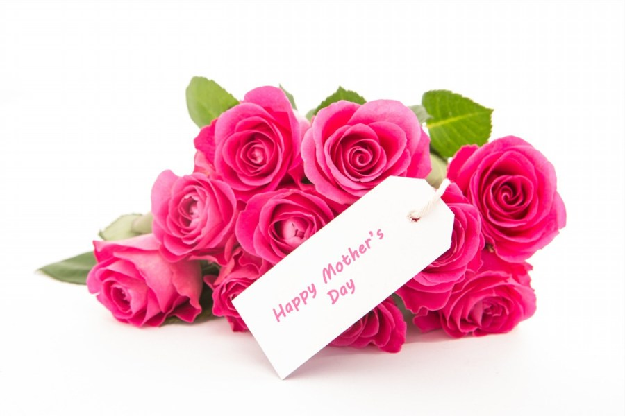 Pink Rose Flowers For Happy Mothers Day   Antigua Luxury Resort     Pink Rose Flowers For Happy Mothers Day