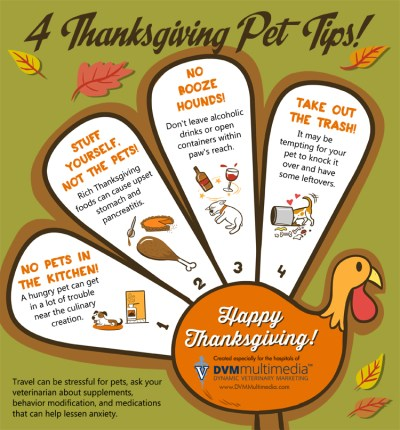 4 Thanksgiving Pet Tips - Golden Woofs