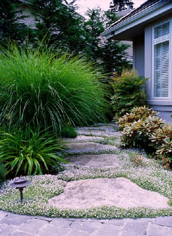 Sundance Landscaping Year Round Color
