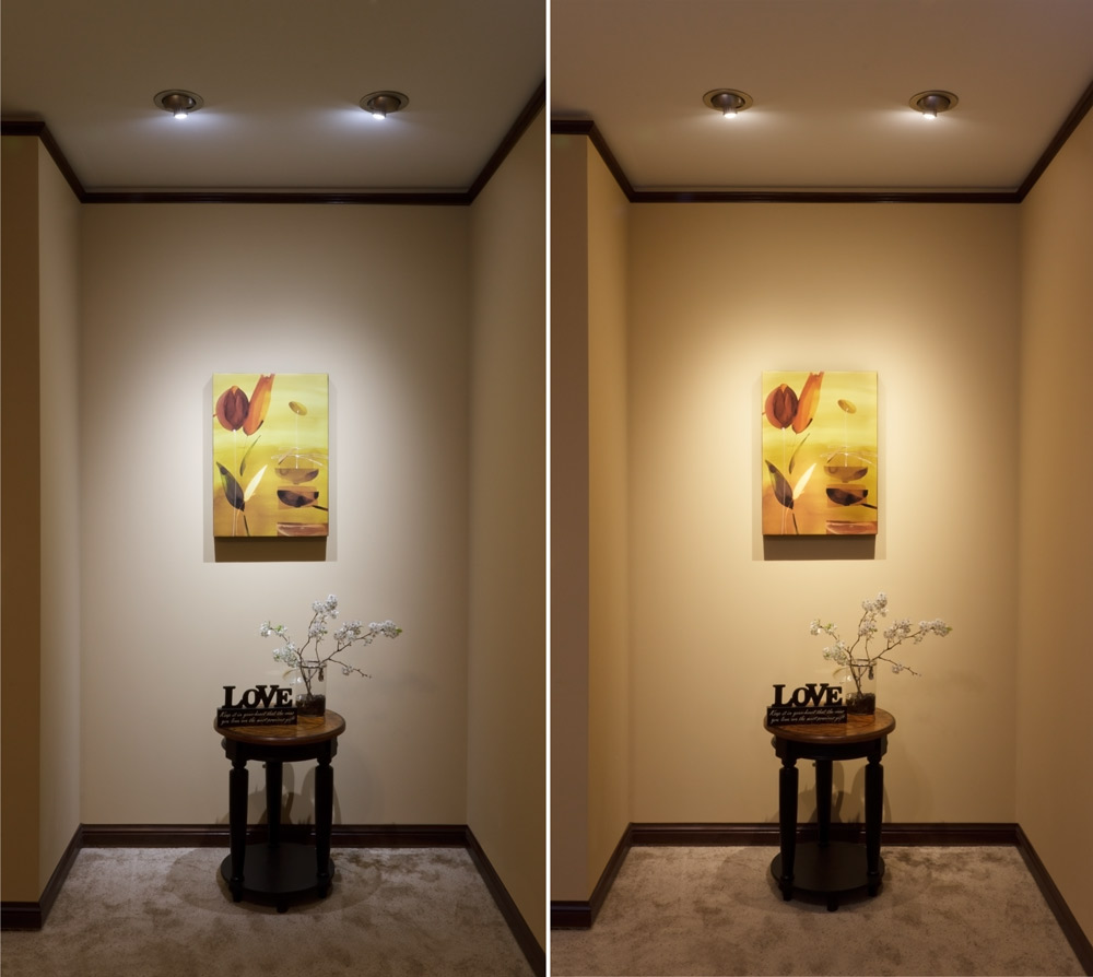 Home Accents Replacement Bulbs