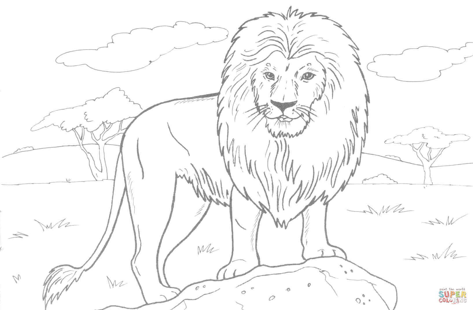 African Lion Coloring Page Free Printable Coloring Pages