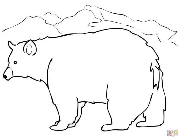 black bear coloring page # 13