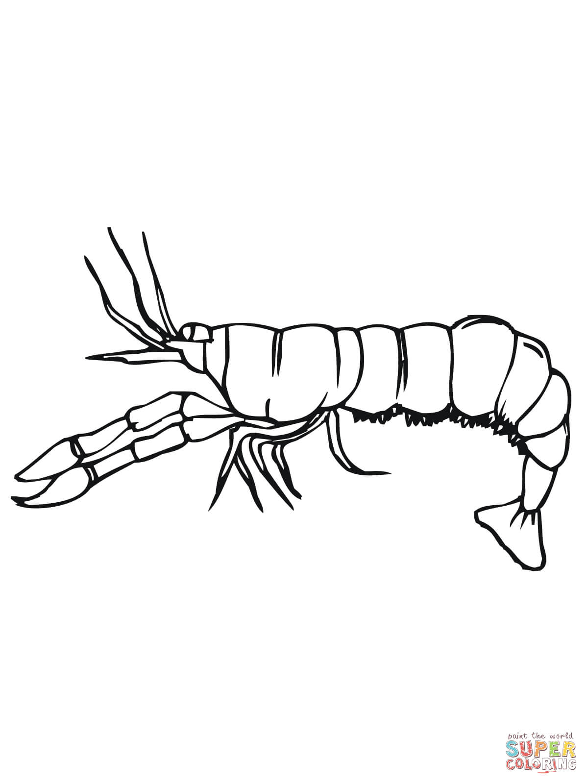 Crawfish Side View Coloring Page Free Printable Coloring Pages