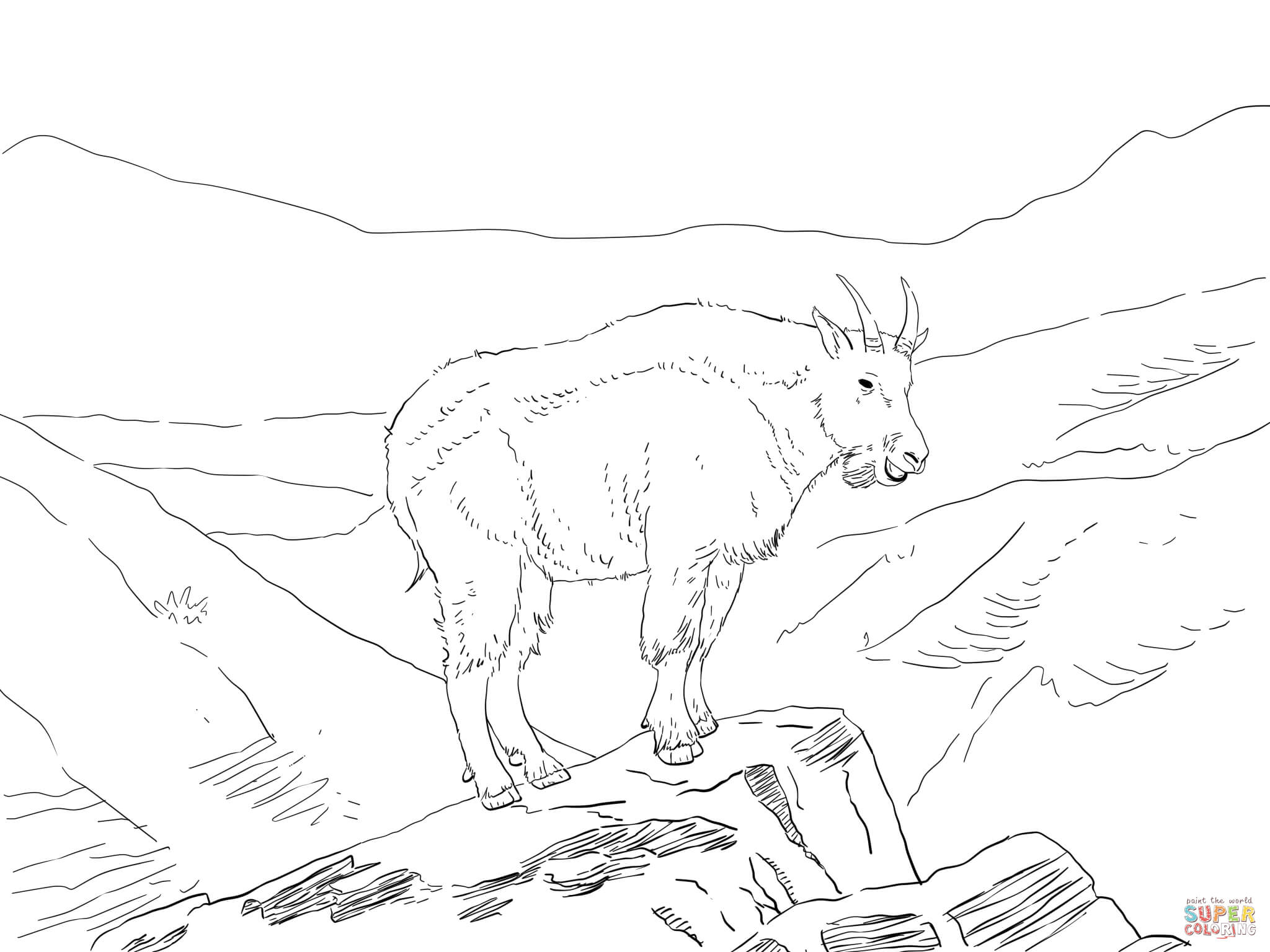 North America Mountain Goat Coloring Page Free Printable