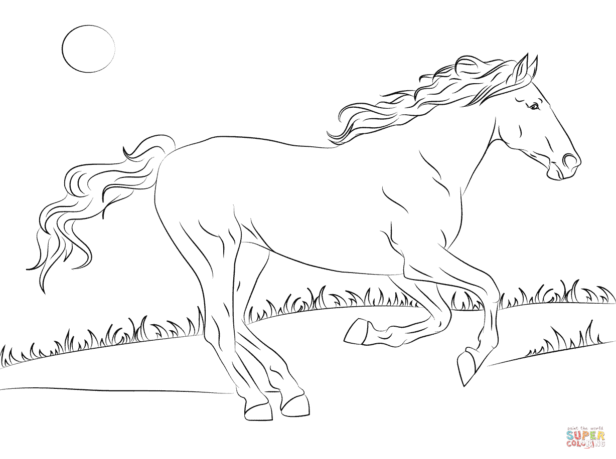 Beautiful Mustang Horse Coloring Page Free Printable Coloring Pages