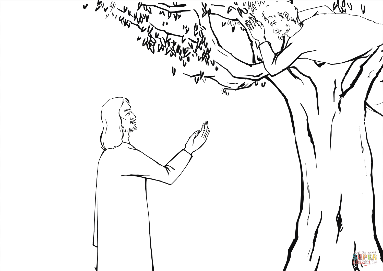 Jesus Asked Zacchaeus To E Down Coloring Page Free Printable