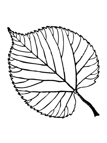 coloring pages of leaves # 6