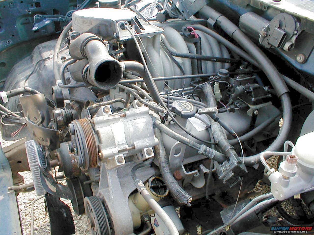Efi 351 Windsor Engine Diagram 1990  W Fuel Injected Engine Diagram on 1993 351w diagram, 302 firing order diagram, 1990 f350 5.8l vacuum diagram,