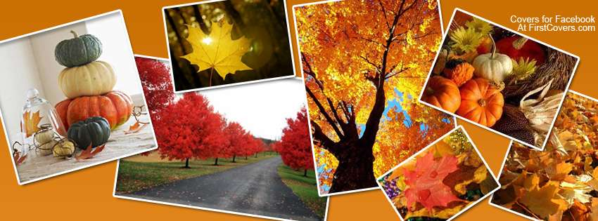 Fall Collages Facebook Covers