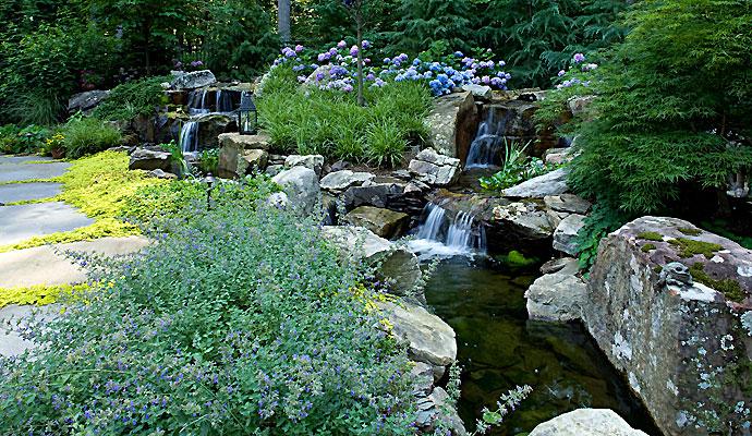 Japanese Pond Garden Design