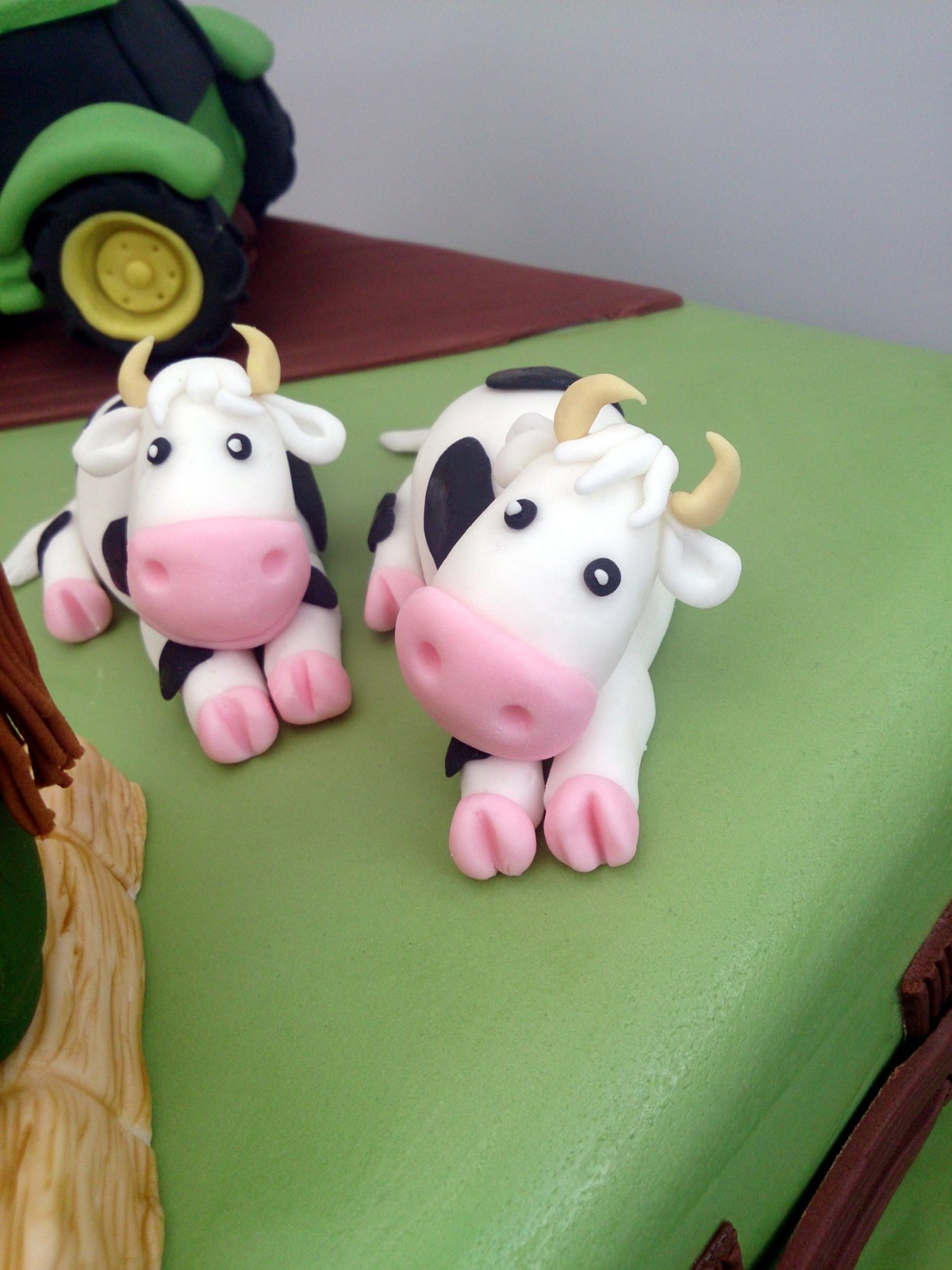 Young Farmers Novelty Birthday Cake 171 Susie S Cakes