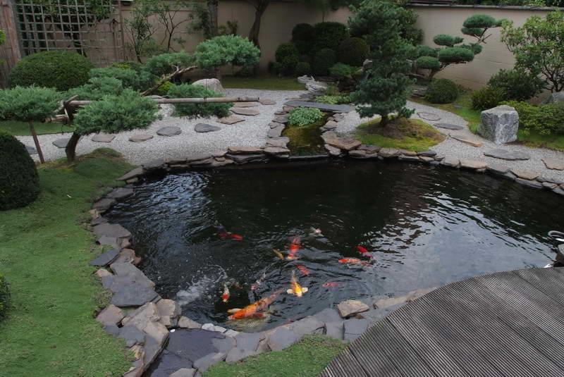 Large Plastic Pond Plants