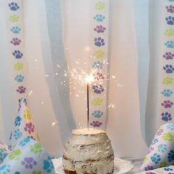 Grain Free Dog Birthday Cake Happy 1st Birthday Winston