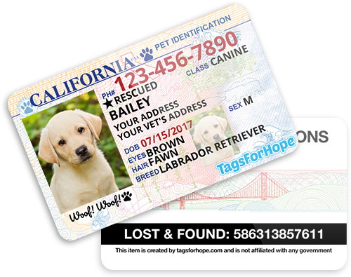 Personalized Dog Id Tags