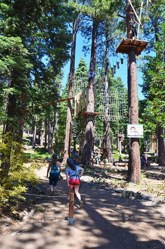 Granlibakken Treetop Adventure Park Lake Tahoe Guide
