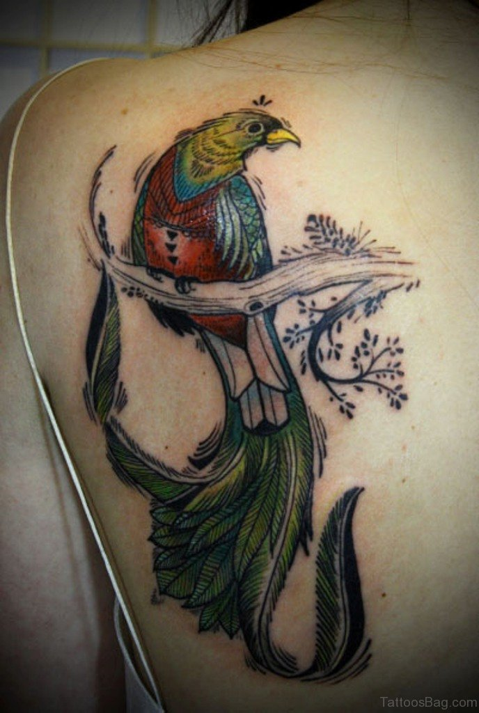 67 Hottest Birds Tattoos For Back