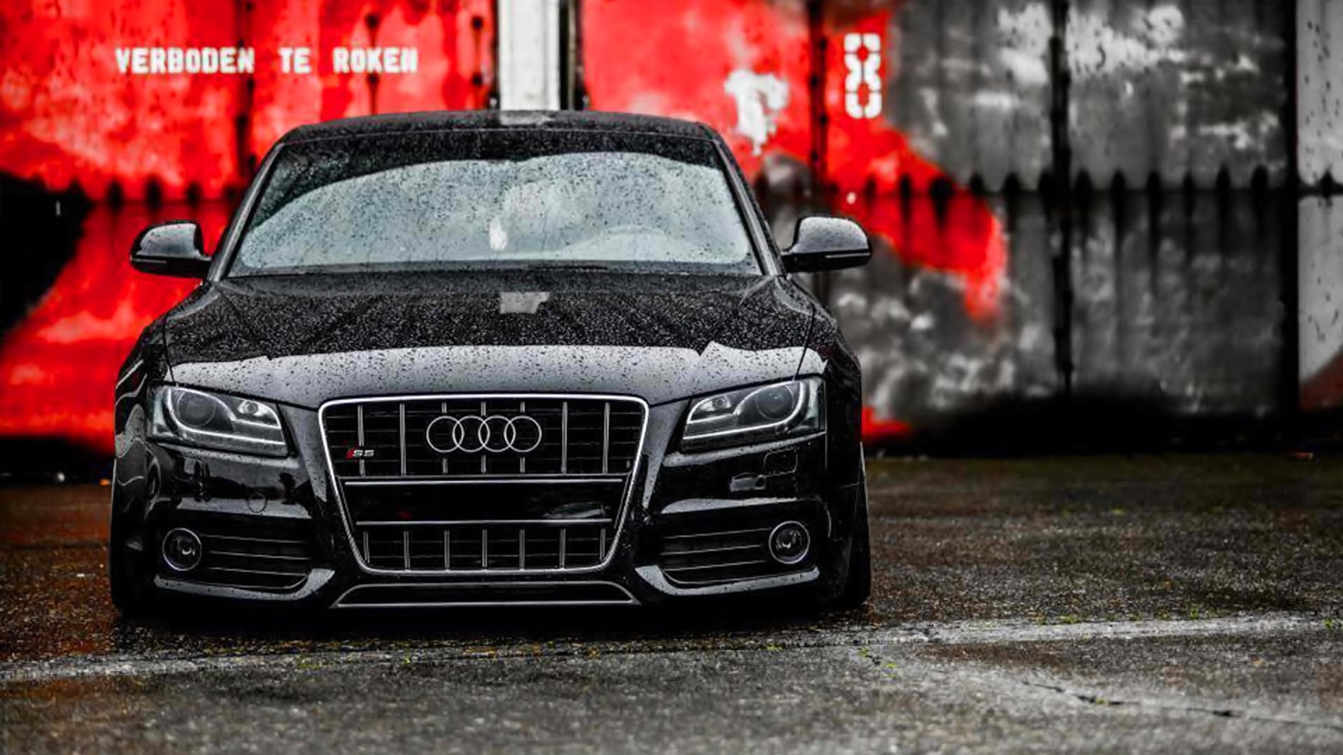 43 Audi Wallpapers Backgrounds in HD For Free Download Audi Wallpaper 11