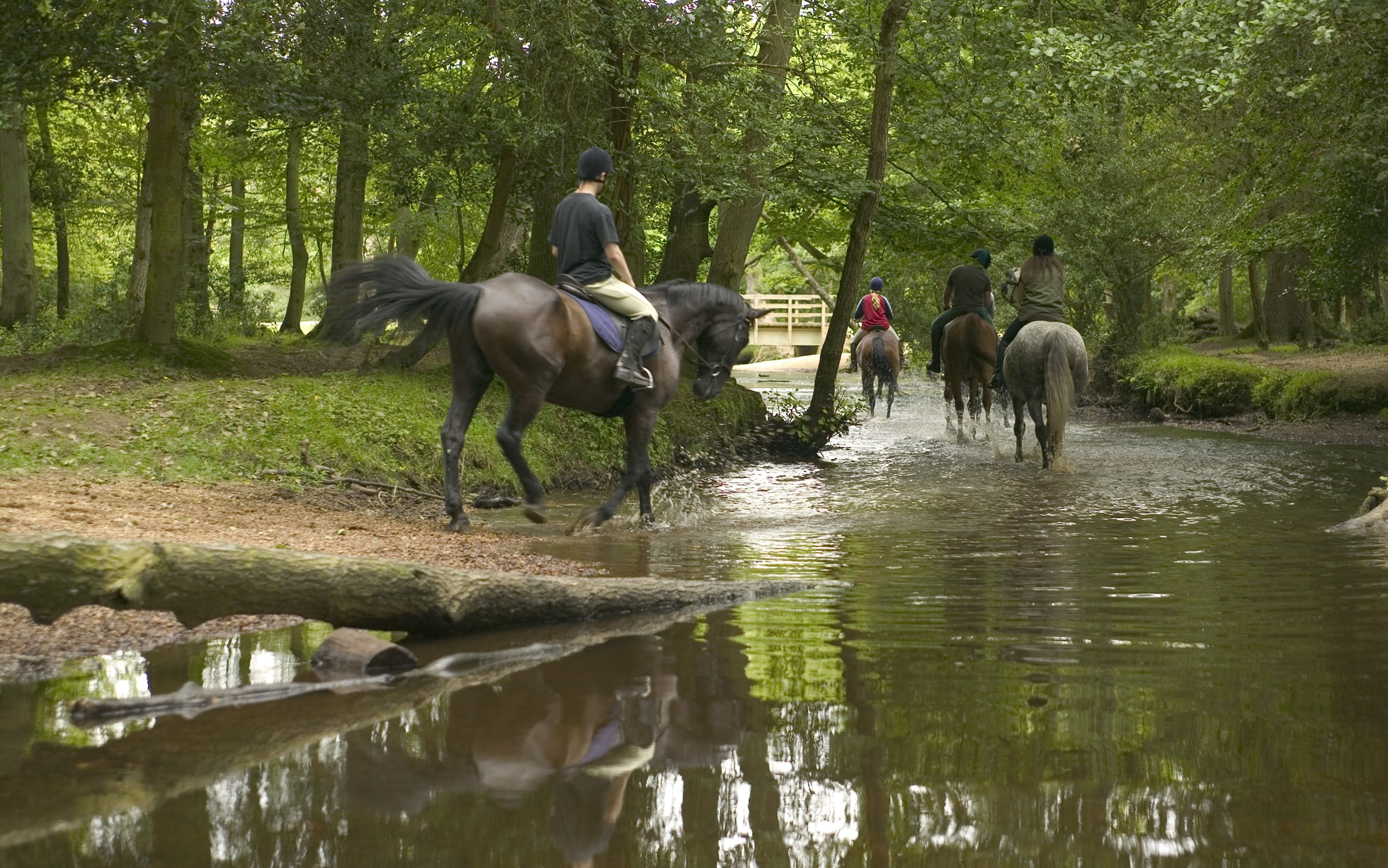Top Non Camping Family Adventure Holidays In The Uk And