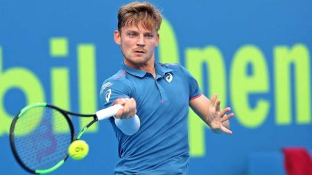 what does the future hold for david goffin
