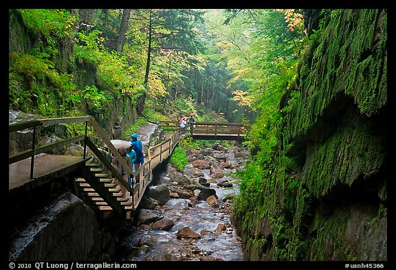 Picture Photo Rainy Day At The Flume Franconia Notch