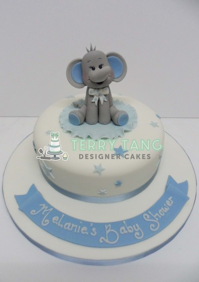 Baby Shower Cakes Terry Tang Designer Cakes