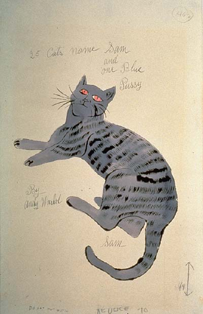 Andy Warhol Drawings 1942 1987