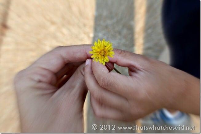 Flower for Mommy!
