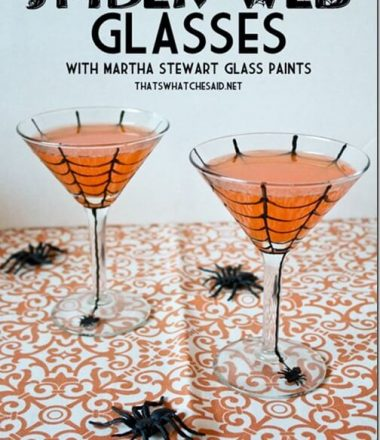 DIY_Halloween_Spider_Web_Glasses_with_thatswhatchesaid.net__