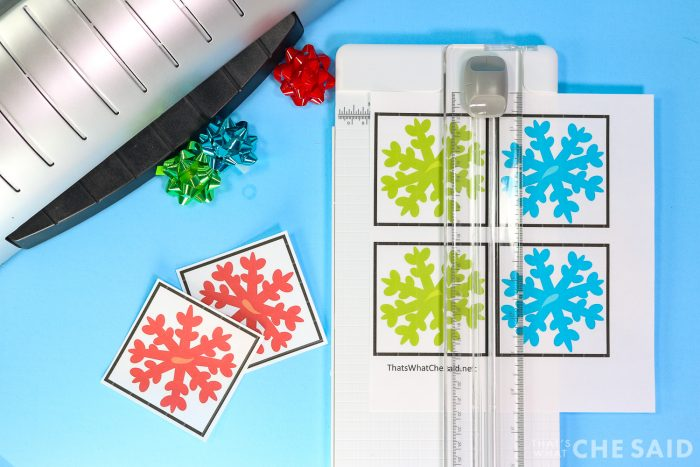 cutting out memory cards with paper cutter
