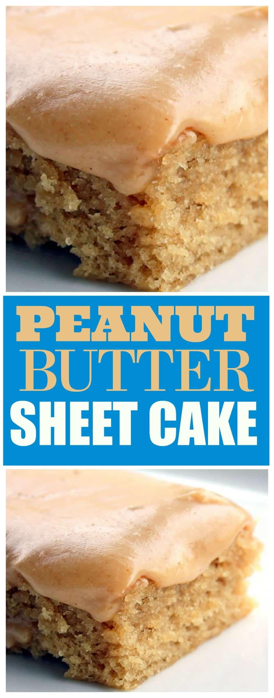 Easiest Cake Recipe Scratch