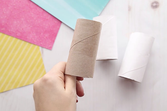 Paint the Paper Roll White
