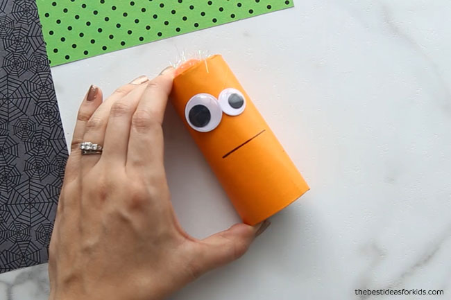 Toilet Paper Roll Monster Draw Face